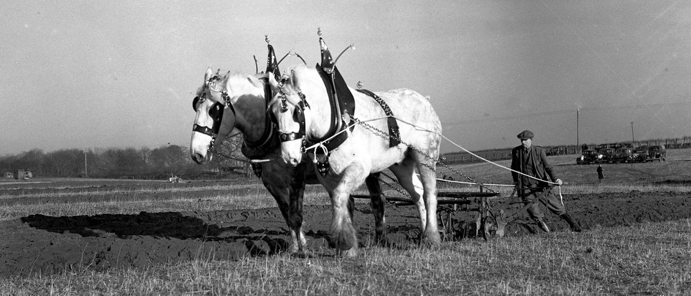 A07 plough-and-horses-bro-1944-1-2-7